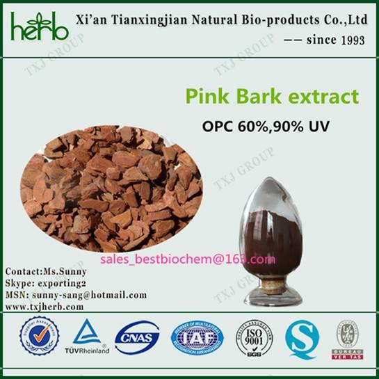pine bark extract manufacturer