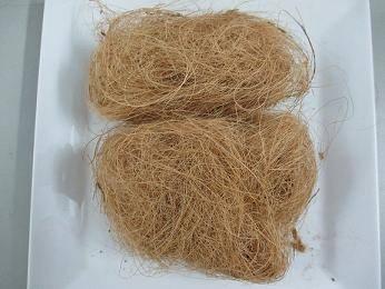 Vietnam Coconut Fiber