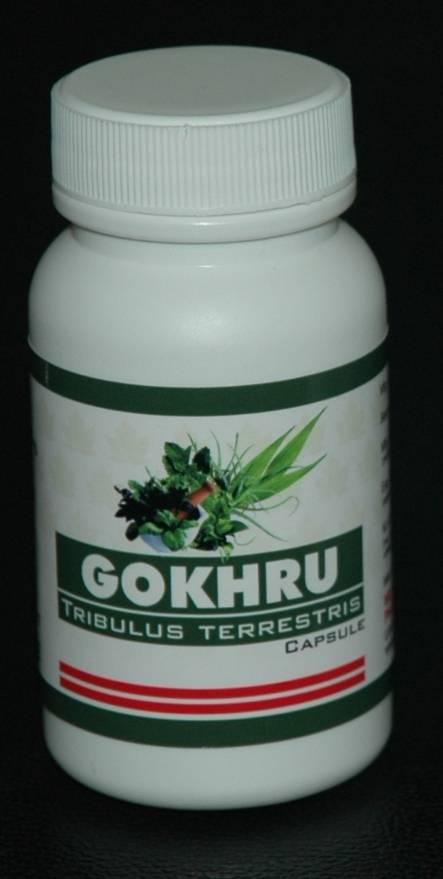 Gokhru (Tribulus Terrestris) Capsule (90 Capsules)