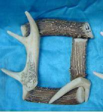 Deer Horn Photo Frame