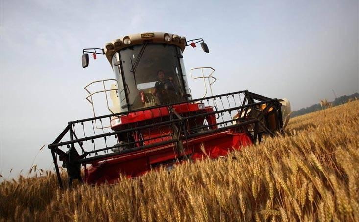 Half-Feed Combine Harvester