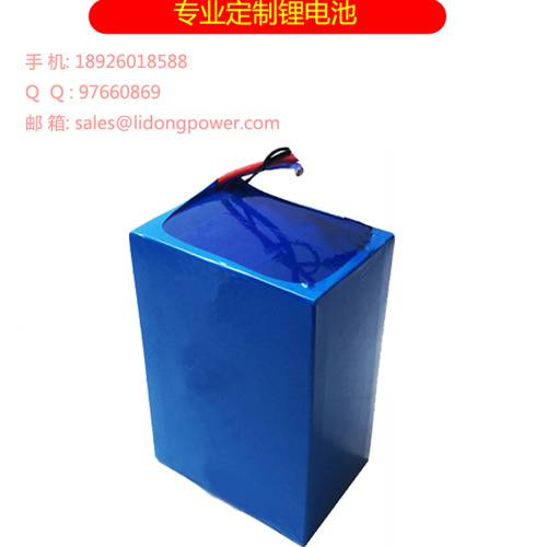 Lithium Iron Phosphate Battery Pack 24V 50Ah