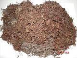raw dried seaweeds sargassum gracilaria eucheuma ulvalactuca alginate meristotheca papulosa