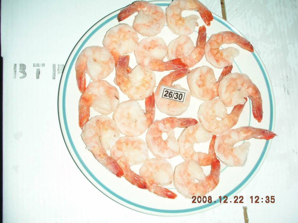 Cooked Shrimps from Bangladesh
