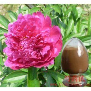 Natural Herbal Paeoniflorin