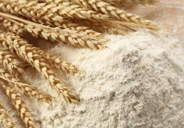 Wheat Flour for sale at good price