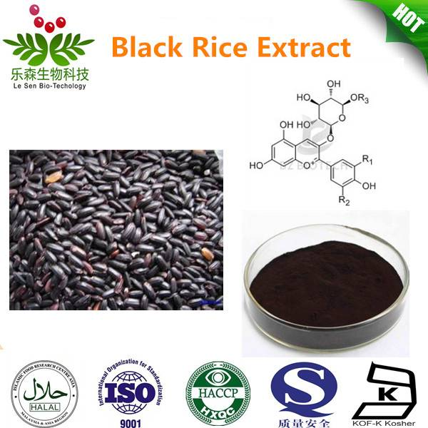 HIgh Quality Black Rice Extract 5%-25% Anthocyanidins
