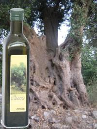 [Super Deal] Extra Virgin Olive Oil