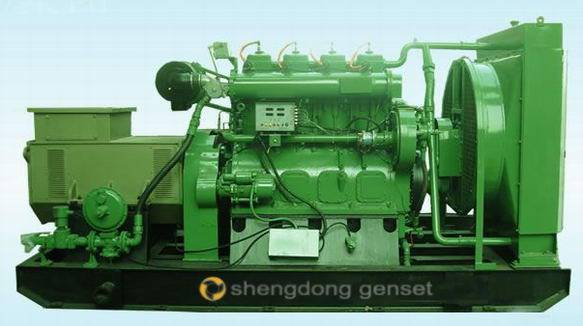 top rank180-300 biogas generator