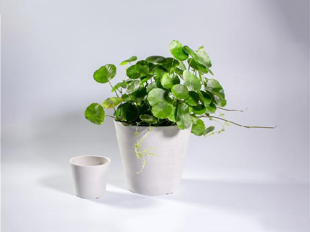 enviroarc - biodegradable plastic flower pots