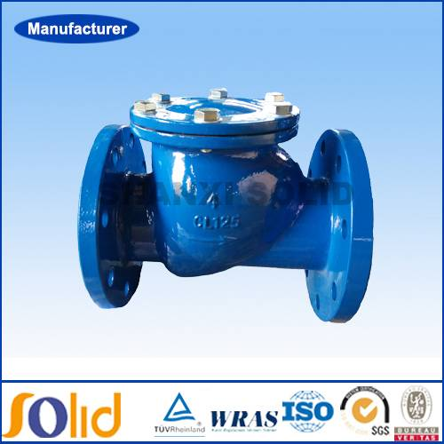 ANSI standard Ductile Iron Flanged End Swing Check Valve