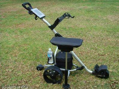 The unique design golf buggy 200R