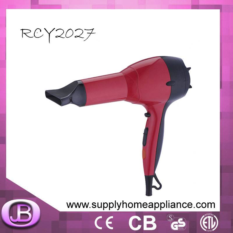 Electric Hair Dryer Manufacturer in China