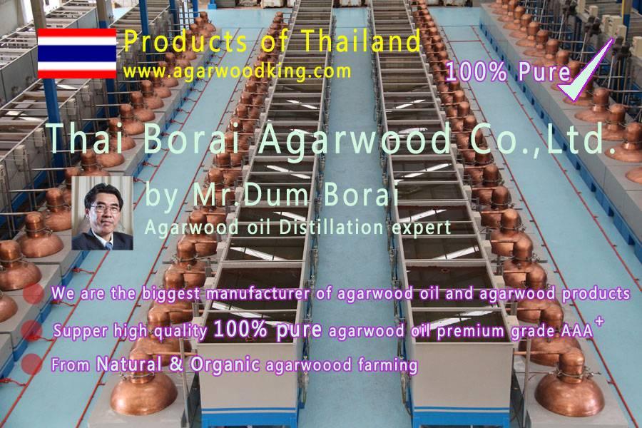 agarwood oil#2