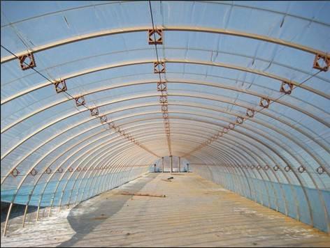 Transparent Plastic Film for Greenhouse