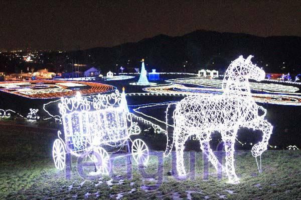 led string decoration holiday lighting