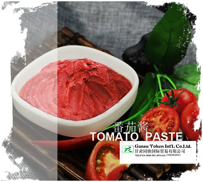 Supply Tomato patse with high quality 28/30 36/38