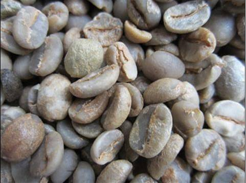 Yunnan Coffee Bean