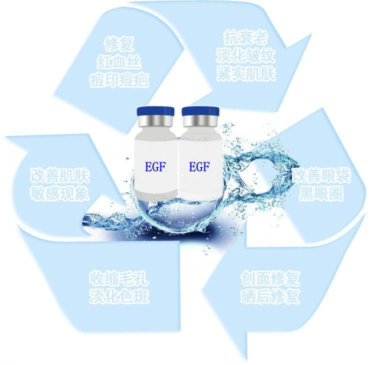Sell Hot Sale EGF Producing (External) (Epidermal Cell Growth Factor)
