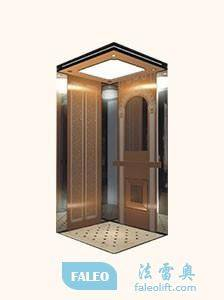Supply good qualiity elevators