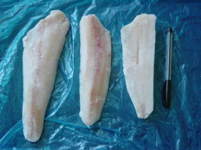 export fish fillet