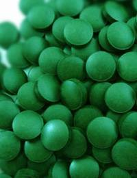 health food/food supplement/spirulina---manufacturer source