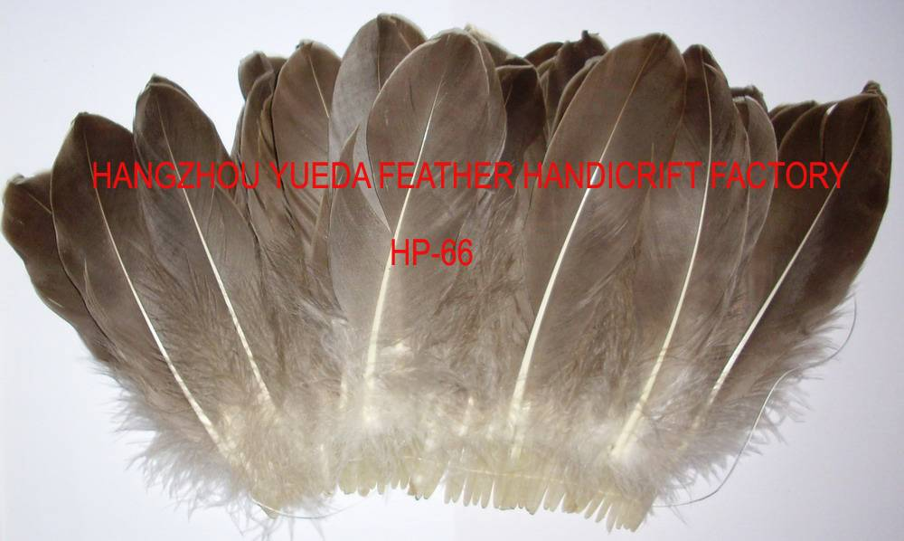 loose feather-66