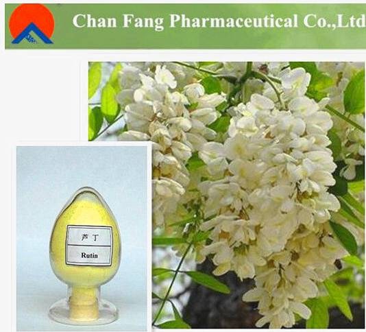100% Pure Natural Sophora Japonica Flower Extract 98% Rutin