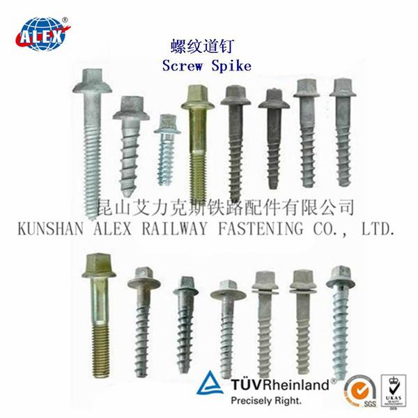 railway spike screw