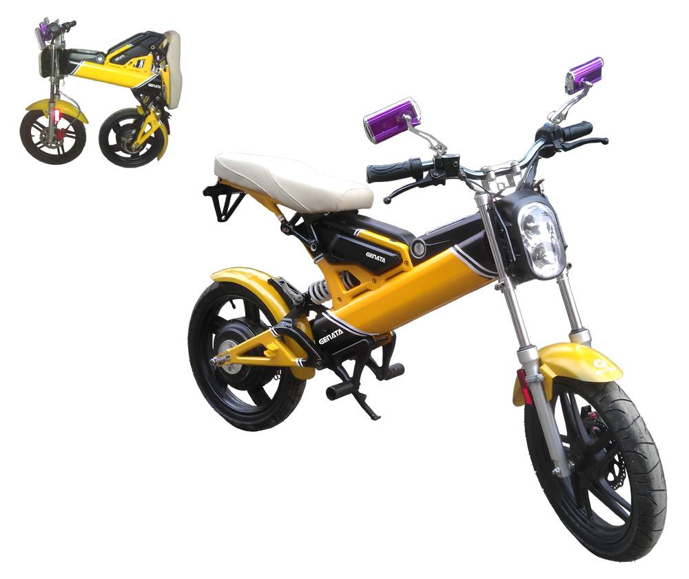 EEC Foldable Electric Bike (GM890E)