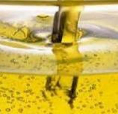 Purchase rapeseed oil
