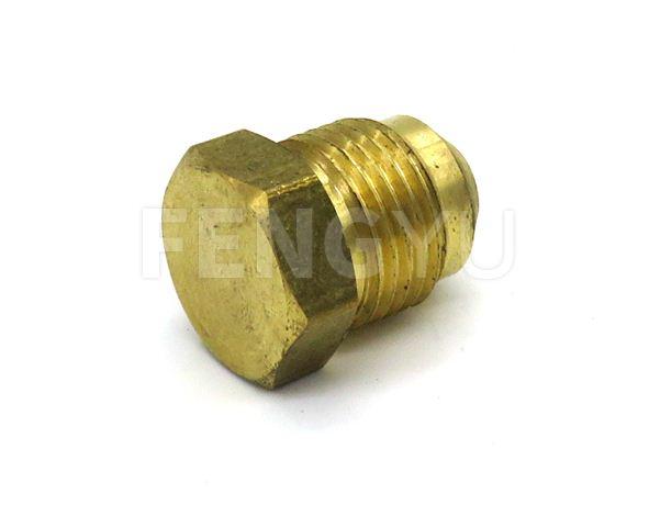 Brass plug (free lead)