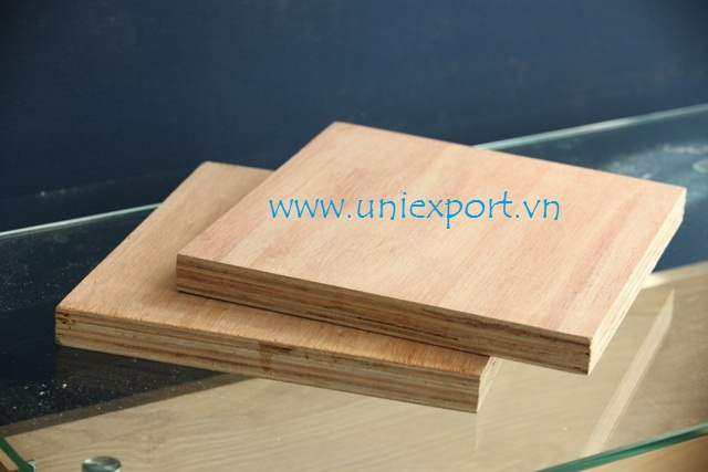72 Hours Boiled Water Tolerance Construction Plywood