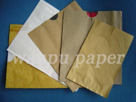 Fruit Protection paper bag