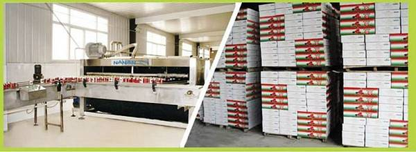 Double concentrate tomato paste supplier
