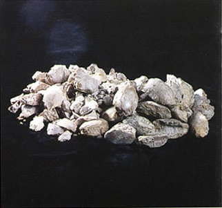 Dead Burned Magnesite (DBM)