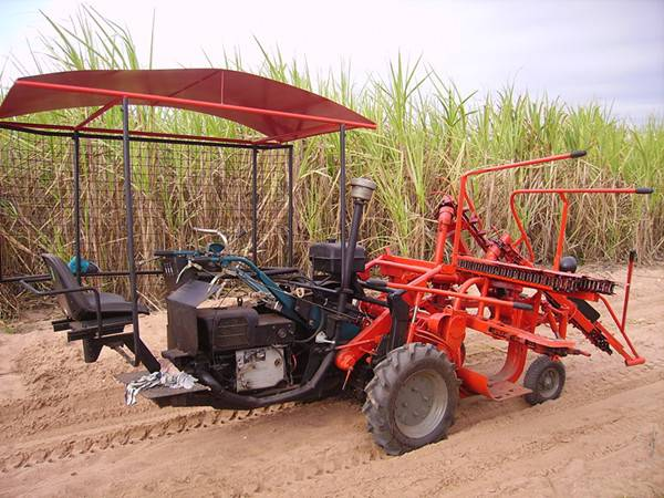Mini combined harvester for harvesting of sugarcane SH5II