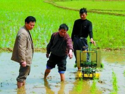 2Row manual rice transplanter, paddy transplanter, rice paddy sedling machine