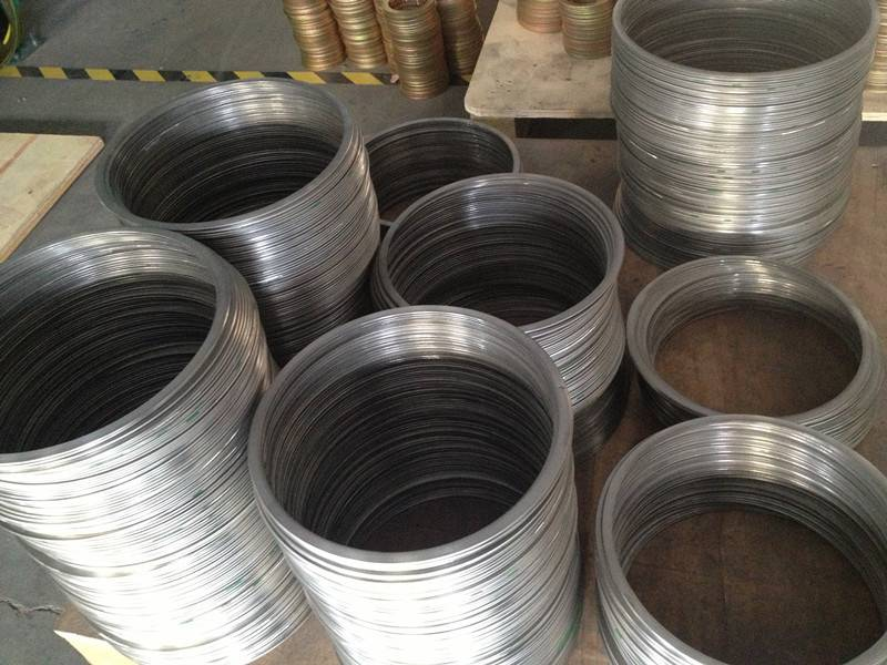 Stainless steel ring for gasket