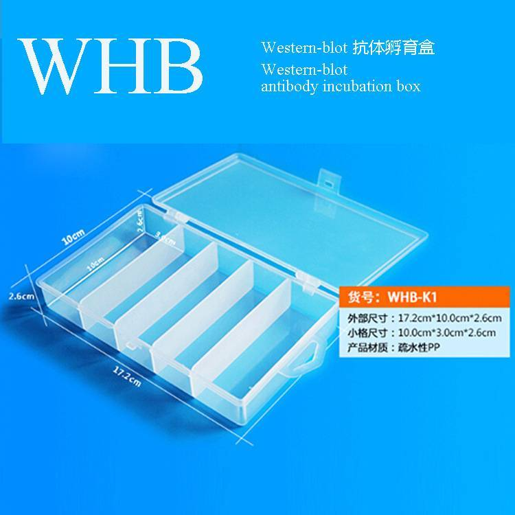 Plastic Western-Blot Antibody Incubation Box