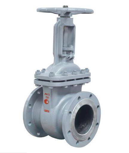 GOST Cast Steel Gate Valve with ISO9001