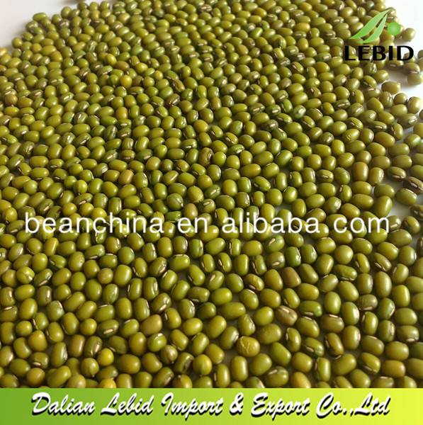 Dry High Quality Bulk Green Mung Bean With A Good Price