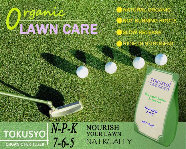 NPK7-5-6 Organic Compound Fertilizer