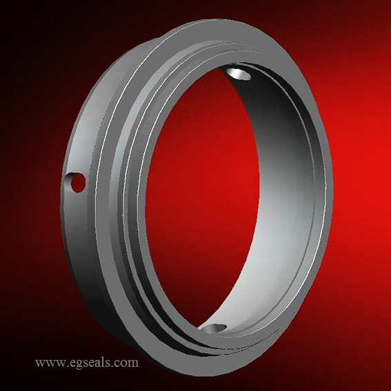 ROPTR-08 Tungsten carbide seal faces