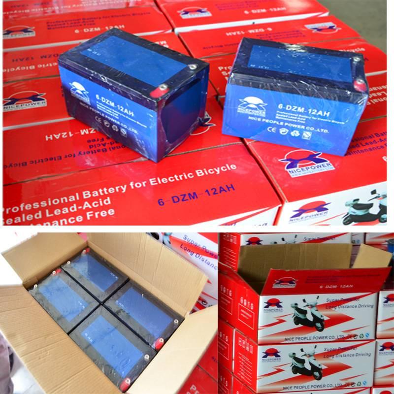 Electric Motorcycle Battery12V12ah/battery packs 24 36 48 V