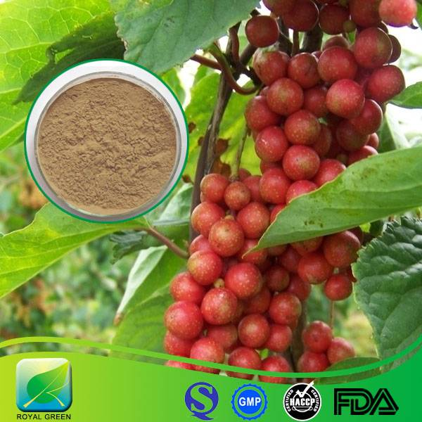 100% Pure Natural High Quality Schisandra Chinensis Extract with Lowest Price