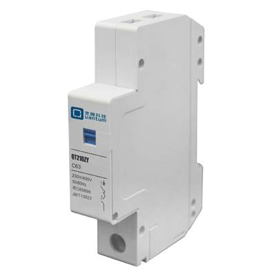 Din Rail Single Phase Smart Switch with KWh Meter