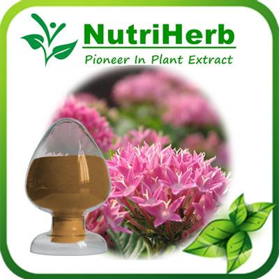 Natural Rhodiola Rosea Extract