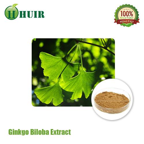 Ginkgo Biloba leaf extract 24% flavones/6% lactones CP10