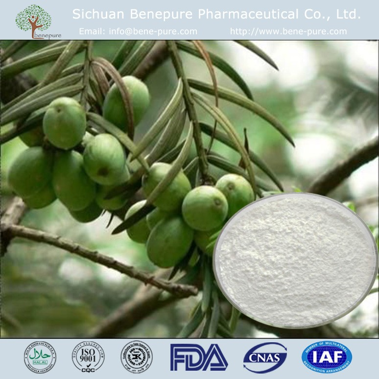 CAS NO.24316-19-6 98% Cephalotaxine with anti cancer function
